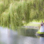 Wedding portrait by the pond under a willow in beacon hill park