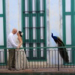 cuba-wedding-photos (159)