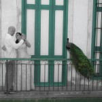 cuba-wedding-photos (161)