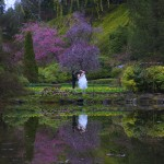 victoria wedding photography-Butchart Gardens (126)