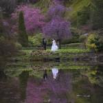 victoria wedding photography-Butchart Gardens (128)