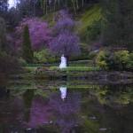 victoria wedding photography-Butchart Gardens (130)