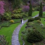 victoria wedding photography-Butchart Gardens (136)