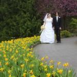 victoria wedding photography-Butchart Gardens (81)