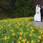 victoria wedding photography-Butchart Gardens (83)